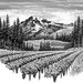 Mount-Rainier-Vineyard.jpg