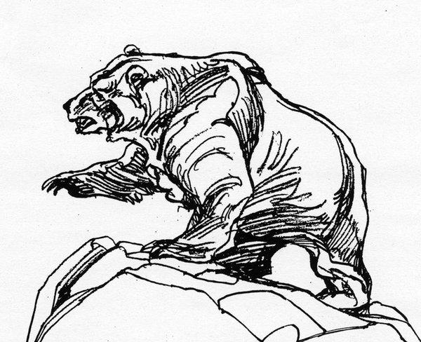 Line Art Bear : Grizzly bear line art imgkid the image kid has it