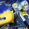 YellowIndian-w.jpg