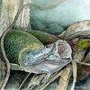 arapaima-monster-fish.jpg