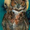 great-horned-owl-in-a-tree.jpg