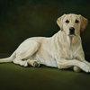 Dog_Oil_painting.jpg