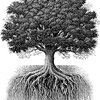 Oak-Tree-And-Roots.jpg